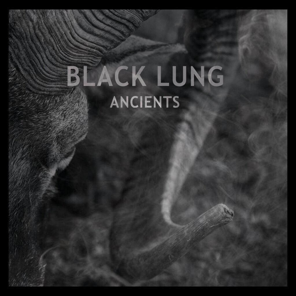 """BLACK LUNG: """"Gone"""" im Video festgehalten"""
