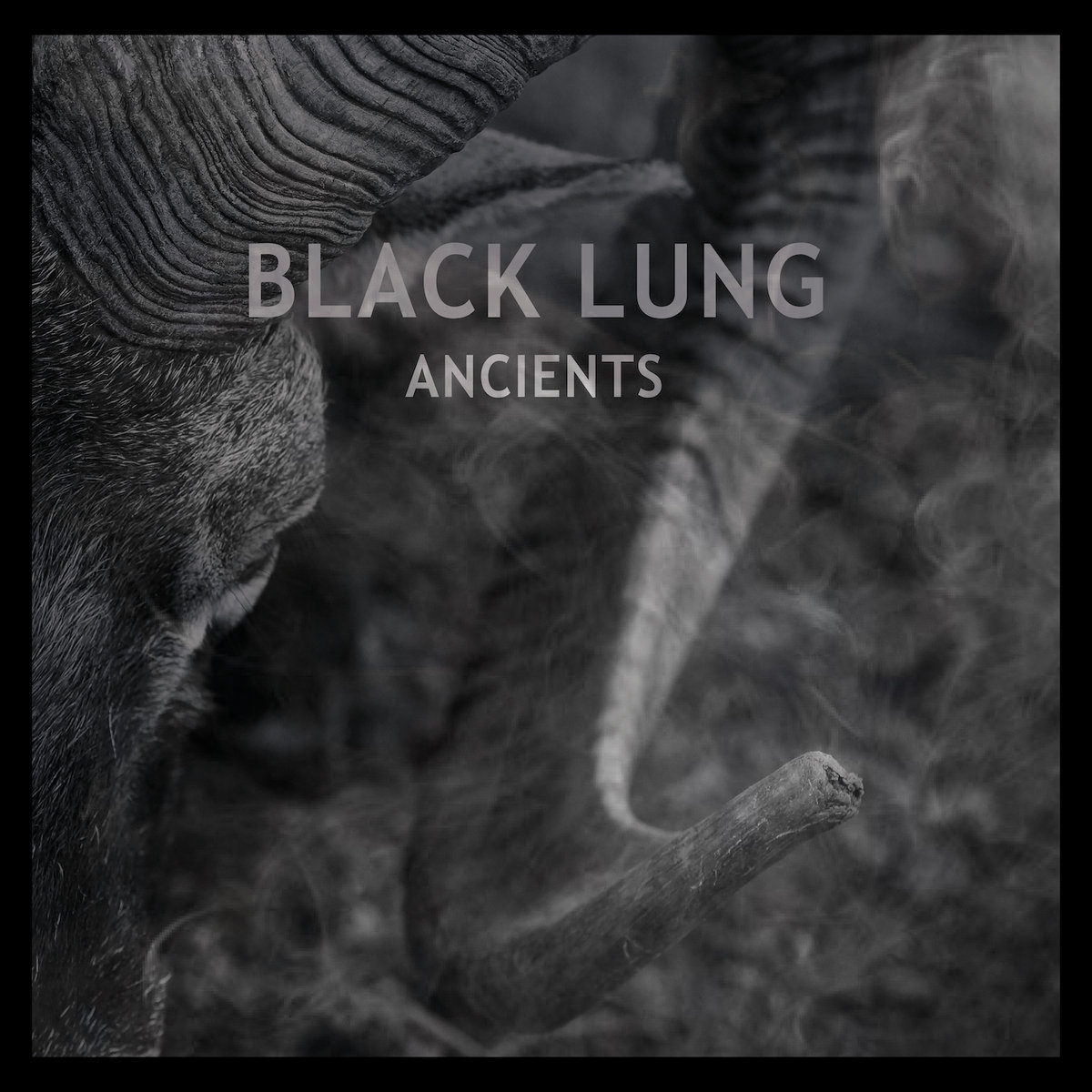 """Black Lung """"Ancients"""""""